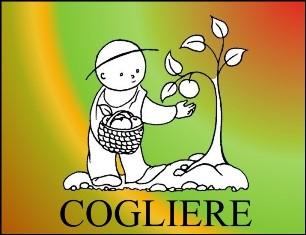 cogliere_s